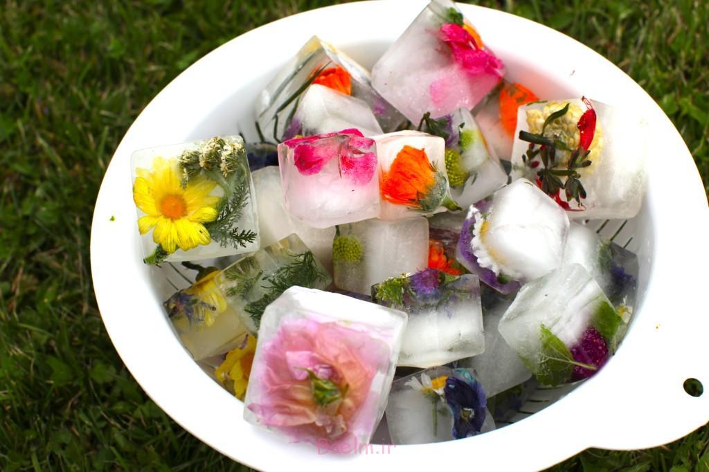 FloralCubes1