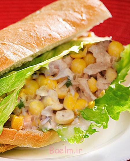 طرز تهیه ساندویچ تن ماهی با ذرت,مواد لازم برای ساندویچ کنسرو ماهی با ذرت