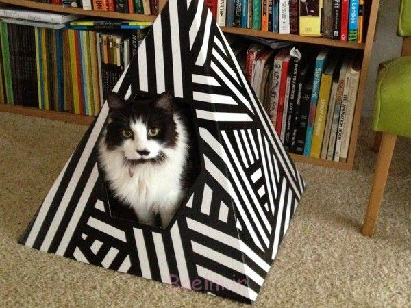 1 Cat Houses ideas for your home (8)