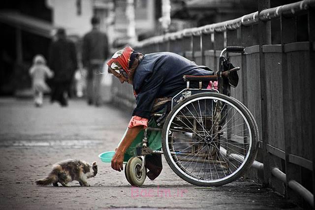 تست آنلاین مهربانی | آیا من شخص مهربانی هستم ؟