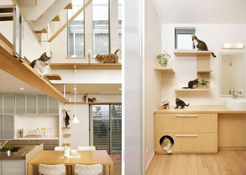 Cat Houses ideas for your home (10)