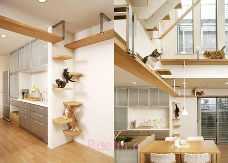 Cat Houses ideas for your home (15)