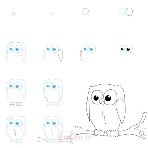 draw owl2 Wonderful Idea For Drawing Easy Animal Figures