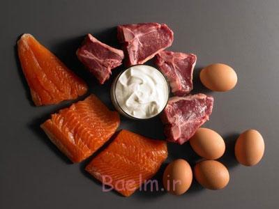 کاهش وزن, پروتئین