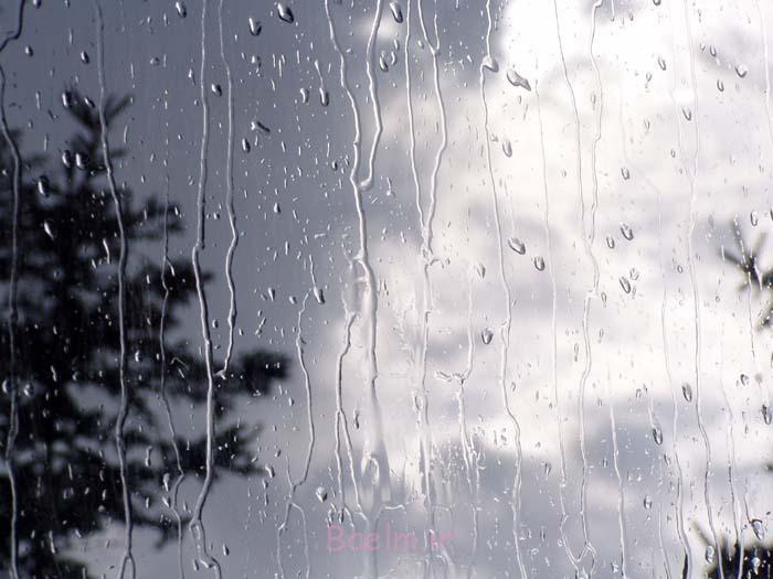 آیا دویدن زیر باران باعث میشود کمتر خیس بشویم ؟