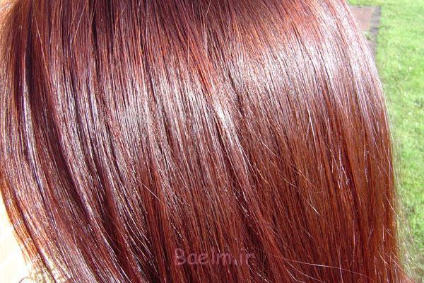 http://phow.ir/wp-content/uploads/2013/08/Henna-to-Hair-1.jpg