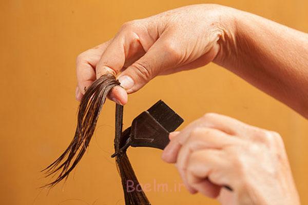 http://phow.ir/wp-content/uploads/2013/08/Henna-to-Hair-6.jpg