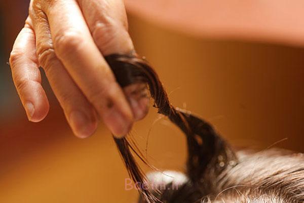 http://phow.ir/wp-content/uploads/2013/08/Henna-to-Hair-8.jpg