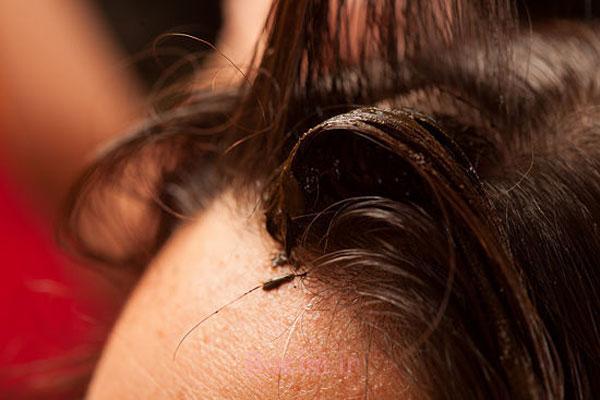 http://phow.ir/wp-content/uploads/2013/08/Henna-to-Hair-9.jpg