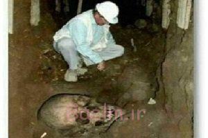 کشف اجساد انسانهای غولپیکر در عربستان صحت دارد? + عکس