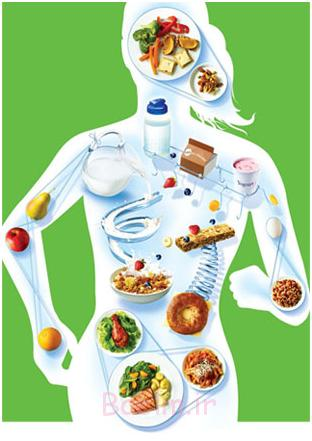 روش هایی برای جلوگیری از چاقی و اضافه وزن در میانسالی