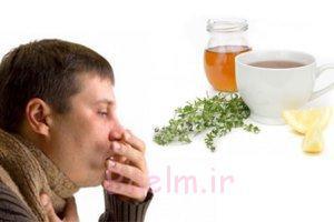 به راحتی می توانید با طب سنتی سرماخوردگی تان را درمان کنید