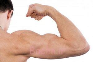 حرکات ورزشی خاص برای پرورش عضلات بازو