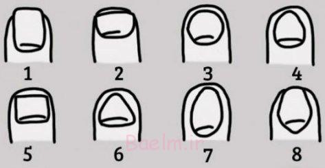 از شکل های زیر شبیه ترین آن به ناخن خود را انتخاب کنید