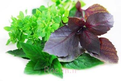 خاصیت گیاه ریحان,ریحان در طب سنتی