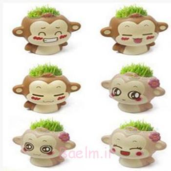 ظرف کاشت سبزه,کاشت سبزه میمون