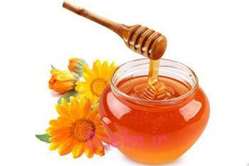گیاهان دارویی درمان خانگی جوش بدن درمان خانگی جوش زیر پوستی صورت درمان جوش