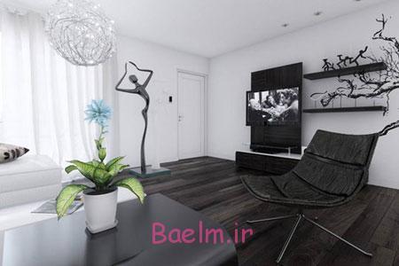 شیک ترین دکوراسیون سیاه و سفید خانه, طراحی سیاه و سفید خانه