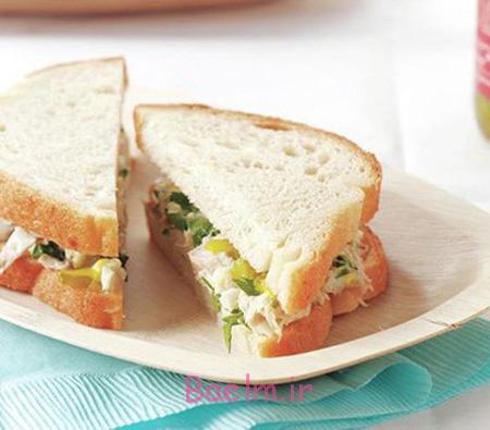طرز تهیه انواع ساندویچ,ساندویچ های مناسب مدرسه