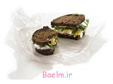 انواع ساندویچ برای بچه مدرسه ای ها,طرز تهیه تغذیه های مناسب مدرسه ای ها