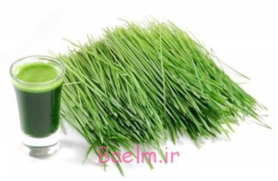 آب سبزه گندم,فواید آب سبزه گندم