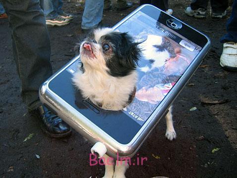 dog-costume-iphone