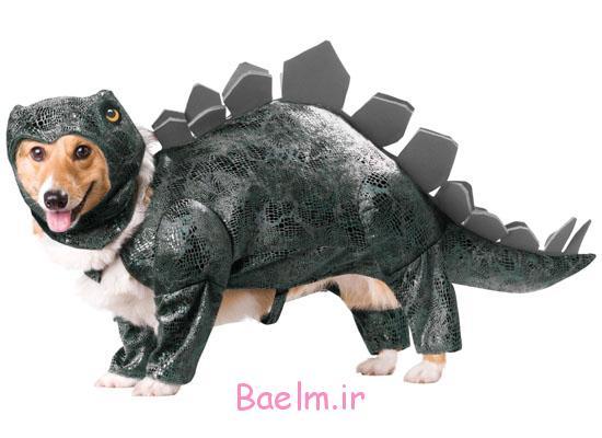 dog-halloween-costume-dinosaur