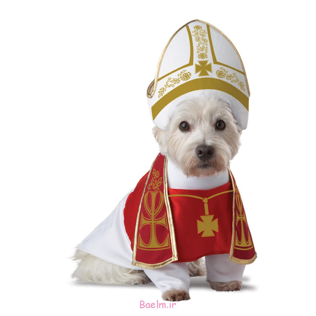 holy-hound-dog-costume-1024x1024