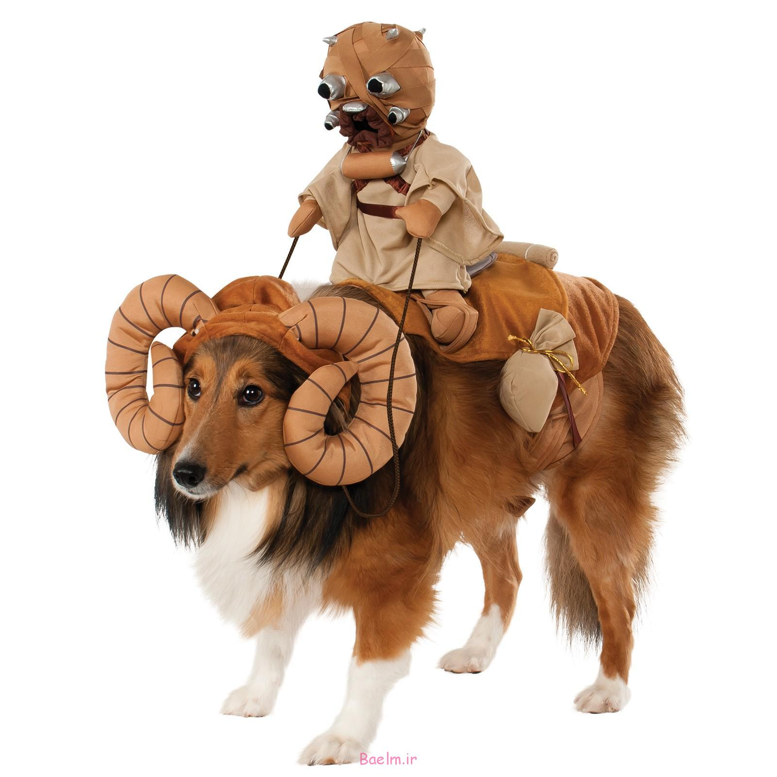 star-wars-bantha-rider-costume-for-pets-cx-808050