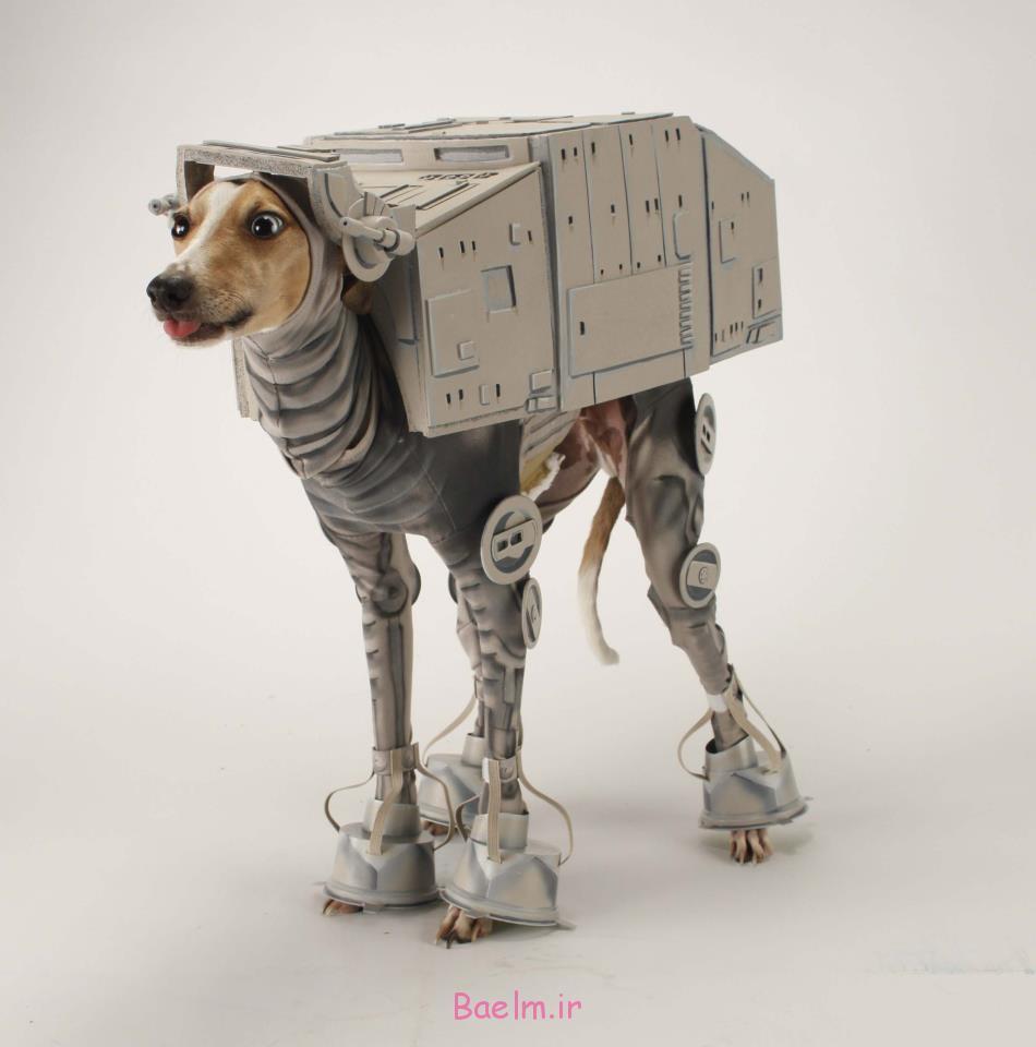 star_wars-dog_costume