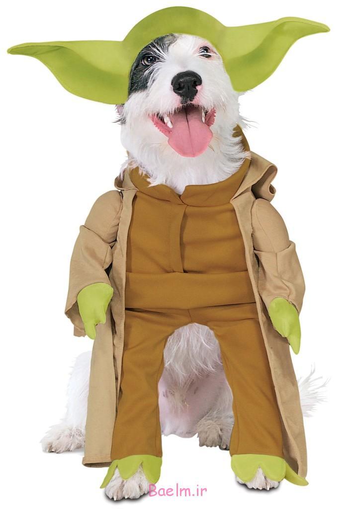 yoda-dog-costume-716x1024