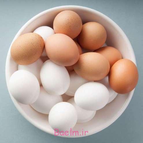 تخم مرغ و تاثیر آن در کاهش وزن و رژیم لاغری