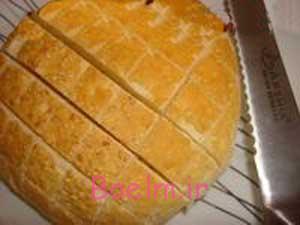 پخت پیتزای مرغ, پخت انواع پیتزا طرز تهیه پیتزای مرغ در نان همبرگر