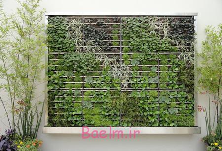 دکوراسیون رنگ سبز در طبیعت,استفاده از رنگ سبز در فضای خانه
