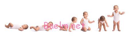 نمودار رشد نوزاد ،رشد نوزاد هفته به هفته