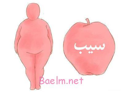 رژیم غذایی متعادل, تغذیه برای بدن سیب شکل