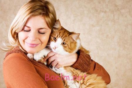 عوارض بیماری گربه,بیماری گربه,تشخیص بیماری گربه