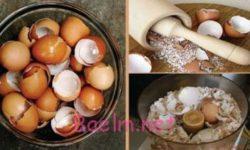 شربتی برای تقویت دستگاه ایمنی بدن با پوست تخم مرغ (امتحان کنید)