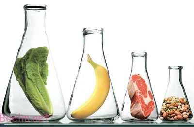 مواد مغذی محافظ,مواد مغذی محافظ بدن
