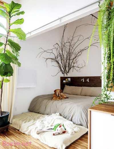 دکوراسیون و چیدمان اتاق خواب, طراحی اتاق خواب به واسطه طبیعت