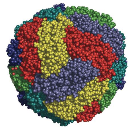 فریتین نوعی پروتئین در بدن ماست که آهن را در خود ذخیره میکند