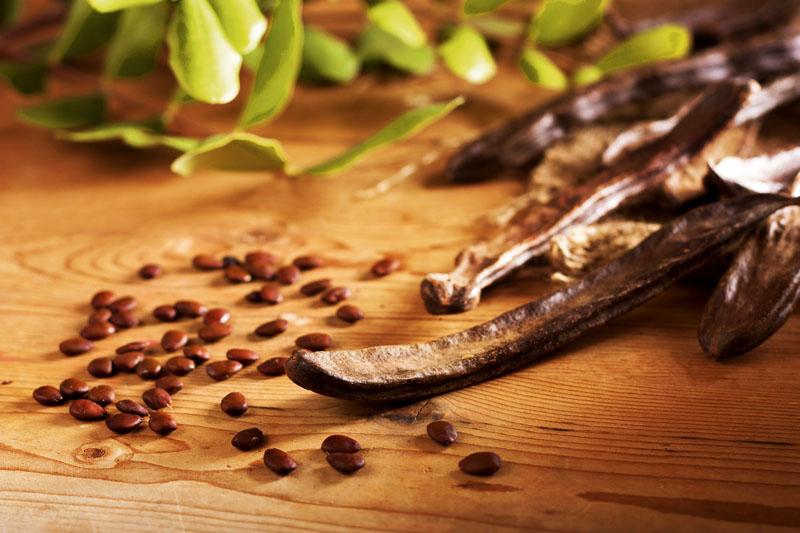 بر اساس طب سنتی خرنوب طبیعت سرد و خشک دارد