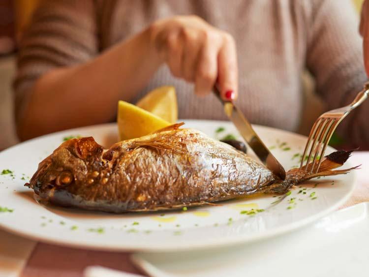 مصرف کدام ماهیها در بارداری مجاز است؟