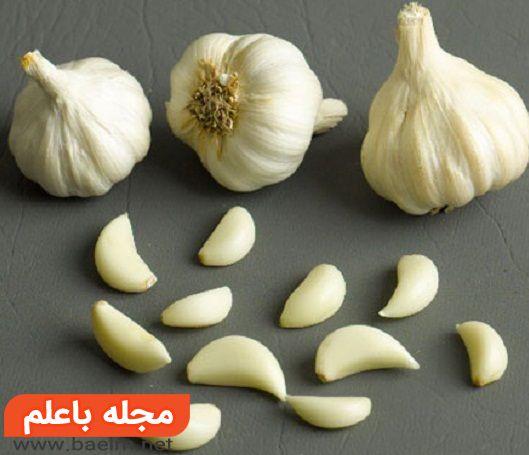 خواص دارویی و درمانی سیر، فواید و ارزش غذایی سیر، مضرات و عوارض جانبی سیر