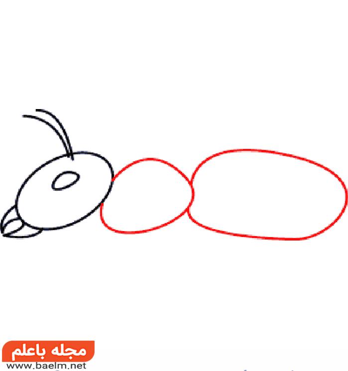 نقاشی مورچه،آموزش کشیدن نقاشی مورچه،مراحل کشیدن نقاشی مورچه3