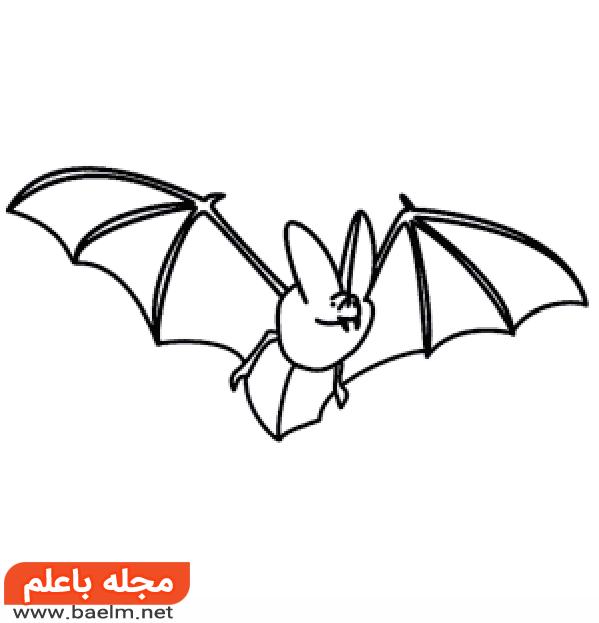 آموزش مرحله به مرحله کشیدن نقاشی خفاش,مراحل کشیدن نقاشی خفاش
