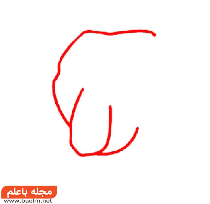 کشیدن نقاشی خرس , آموزش کشیدن نقاشی خرس به صورت تصویری2