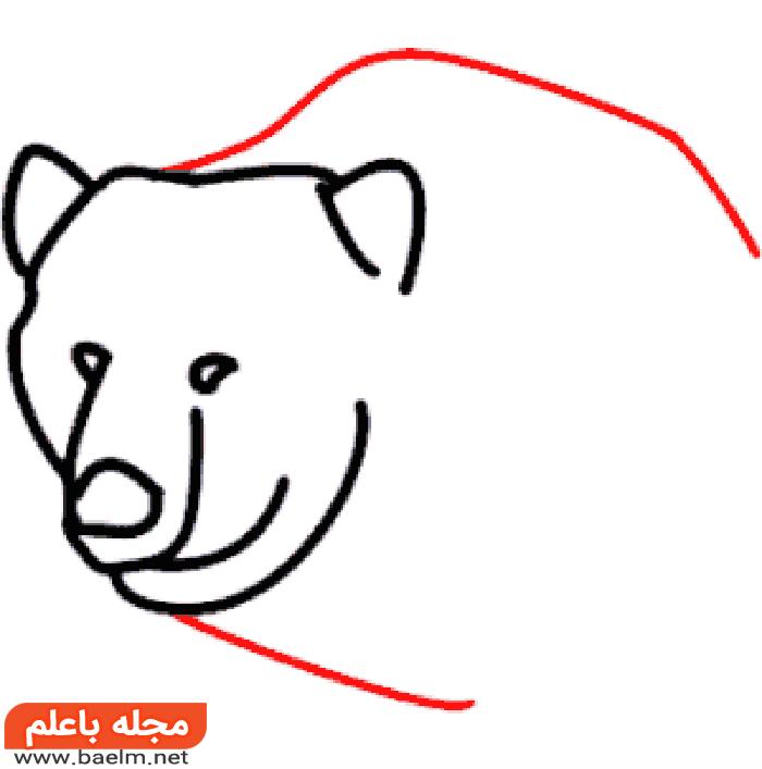کشیدن نقاشی خرس , آموزش کشیدن نقاشی خرس به صورت تصویری4