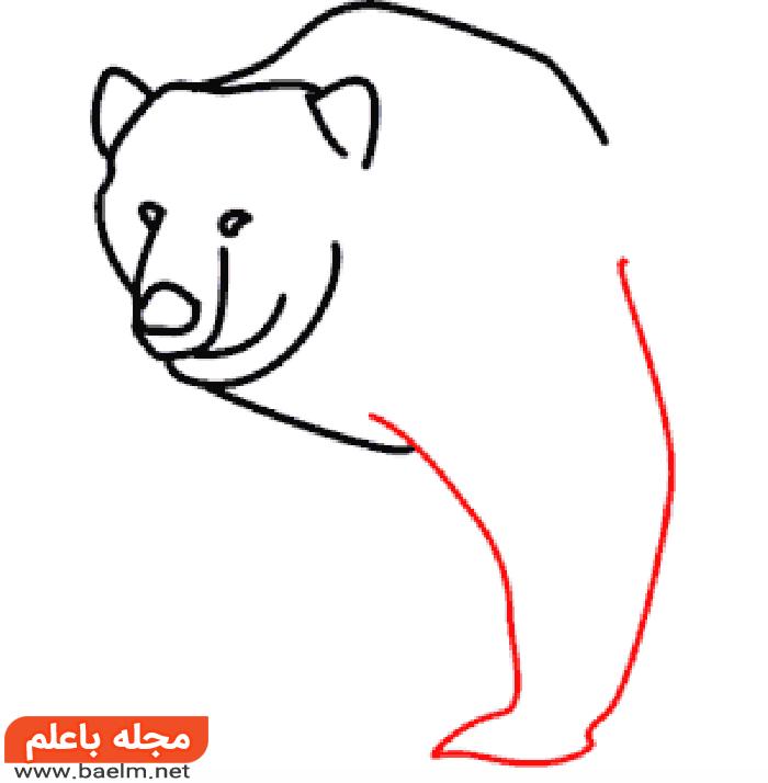 کشیدن نقاشی خرس , آموزش کشیدن نقاشی خرس به صورت تصویری5