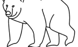 """آموزش قدم به قدم کشیدن """"نقاشی خرس"""",نقاشی انواع حیوانات"""